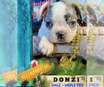 Image preview for Ad Listing. Nickname: DONZI