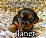 Image preview for Ad Listing. Nickname: Janet