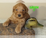 Image preview for Ad Listing. Nickname: Green Collar