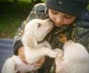 Labrador Retriever Puppy For Sale in SAND LAKE, Michigan,
