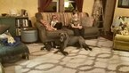 Female AKC Great Dane limited registration availab