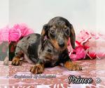 Image preview for Ad Listing. Nickname: Prince