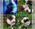 Image preview for Ad Listing. Nickname: Hulk