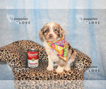 Image preview for Ad Listing. Nickname: HOLD BENTLEY