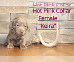 Image preview for Ad Listing. Nickname: Keira