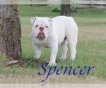 Image preview for Ad Listing. Nickname: Spencer
