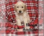 Image preview for Ad Listing. Nickname: Kemani