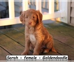 Image preview for Ad Listing. Nickname: Sarah