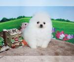 Image preview for Ad Listing. Nickname: Nini