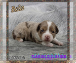Image preview for Ad Listing. Nickname: Azle