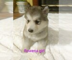 Image preview for Ad Listing. Nickname: Rowena