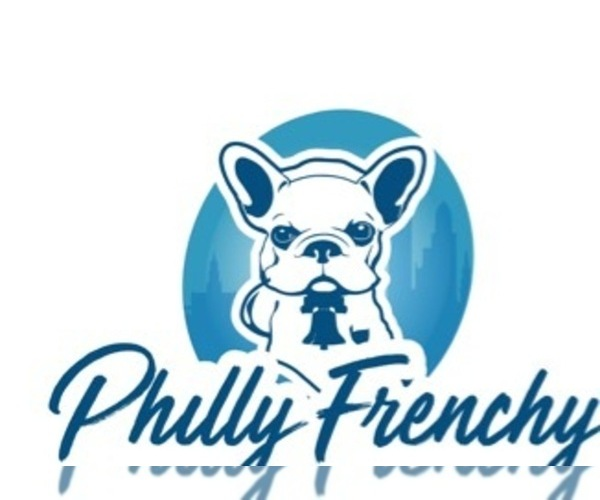 Medium Photo #5 French Bulldog Puppy For Sale in PHILA, PA, USA