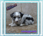 Image preview for Ad Listing. Nickname: Kelsea
