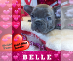 Image preview for Ad Listing. Nickname: BELLE