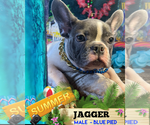 Image preview for Ad Listing. Nickname: JAGGER