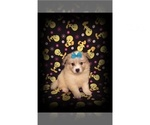 Small #3 American Eskimo Dog