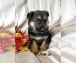 Image preview for Ad Listing. Nickname: Annie