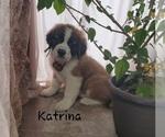 Image preview for Ad Listing. Nickname: Katrina