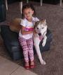 Labrador Retriever-Siberian Husky Mix Dog For Adoption in CORPUS CHRISTI, TX, USA