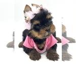 Image preview for Ad Listing. Nickname: Princess