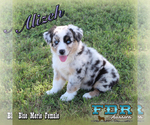 Image preview for Ad Listing. Nickname: Alizeh