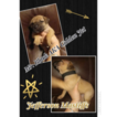 Cane Corso Puppy For Sale in WAVERLY, VA