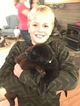 Labrador Retriever Puppy For Sale in SPRING LAKE, MI, USA