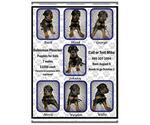 Image preview for Ad Listing. Nickname: 7 Males Dobies
