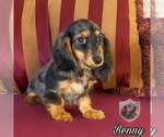 Image preview for Ad Listing. Nickname: Benny