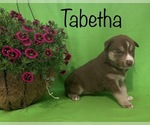 Image preview for Ad Listing. Nickname: Tabetha