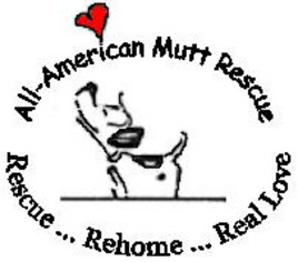 Mutt Dog For Adoption in Huddleston, VA, USA