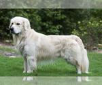 Small #32 Breeder Profile image