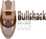 Bulldog Breeder in CUTLER BAY, FL, USA