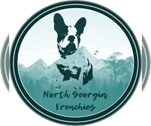 Main photo of French Bulldog Dog Breeder near GAINESVILLE, GA, USA