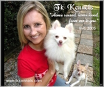 Pomeranian Breeder in GRAYSON, LA, USA