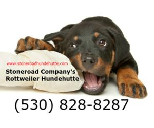 Main photo of Rottweiler Dog Breeder near CHICO, CA, USA
