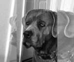 Small #24 Breeder Profile image