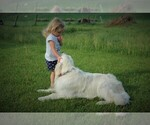 Small Photo #1  Breeder Profile in NAMPA, ID, USA