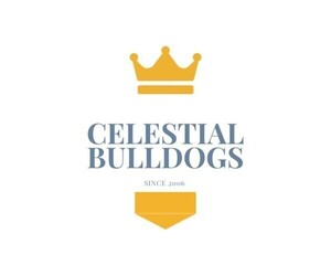 Main photo of Bulldog Dog Breeder near NORCO, CA, USA