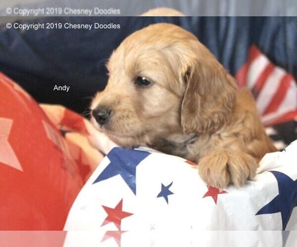 Medium Photo #3  Breeder Profile in WACO, TX, USA