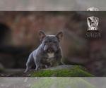 Small Photo #1  Breeder Profile in FRESNO, CA, USA