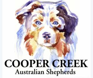 Australian Shepherd Dog Breeder in SMITHVILLE,  USA