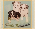Miniature Australian Shepherd Breeder in PHOENIX, AZ, USA