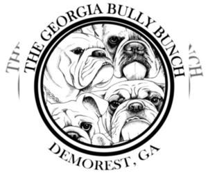 Main photo of English Bulldog Dog Breeder near DEMOREST, GA, USA