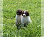 Small #73 Breeder Profile image