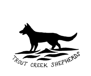German Shepherd Dog Breeder in BRISTOL, IN