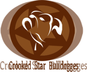 Olde English Bulldogge Breeder in MAYPEARL, TX, USA