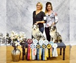 Small Photo #13  Breeder Profile in CHICKASHA, OK, USA