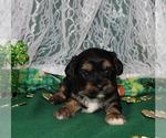 Small #23 Breeder Profile image