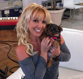 Photo of Britney Spears